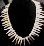 Spiky Shell Necklace