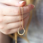 Gold Rainbow Crystals Horseshoe Necklace